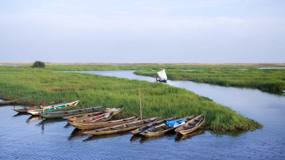 5 bonnes raisons de voyager en Afrique avec ses enfants