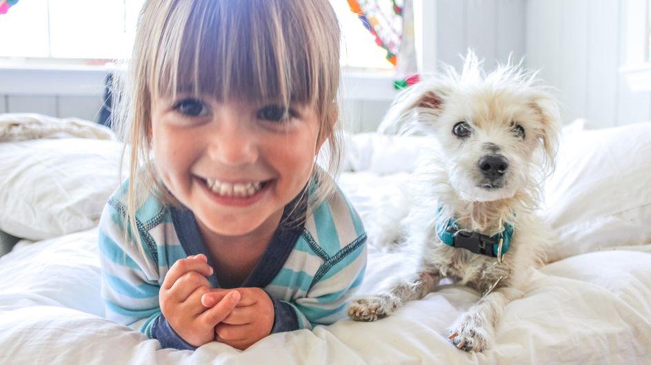 Hund, Vogel und Co.: Welche Haustiere sind für Kinder geeignet?