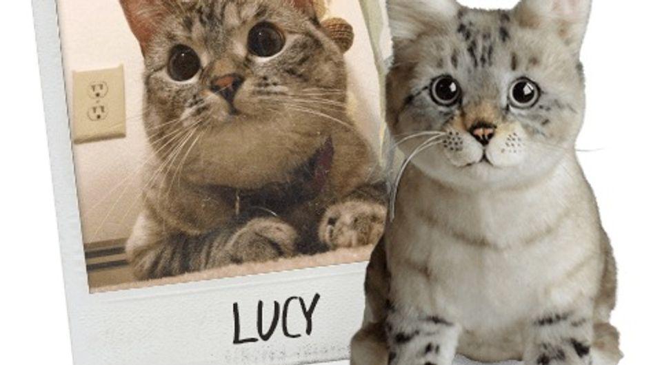 Vous pouvez maintenant cloner votre animal en peluche et c'est adorable ! (Photos)