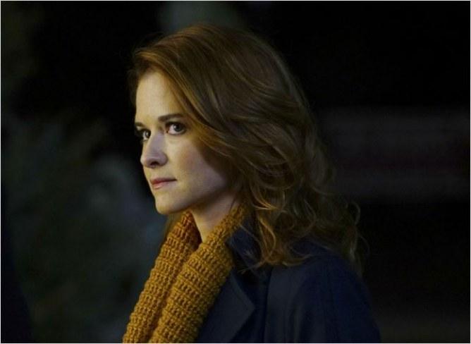 Sarah Drew / April Kepner