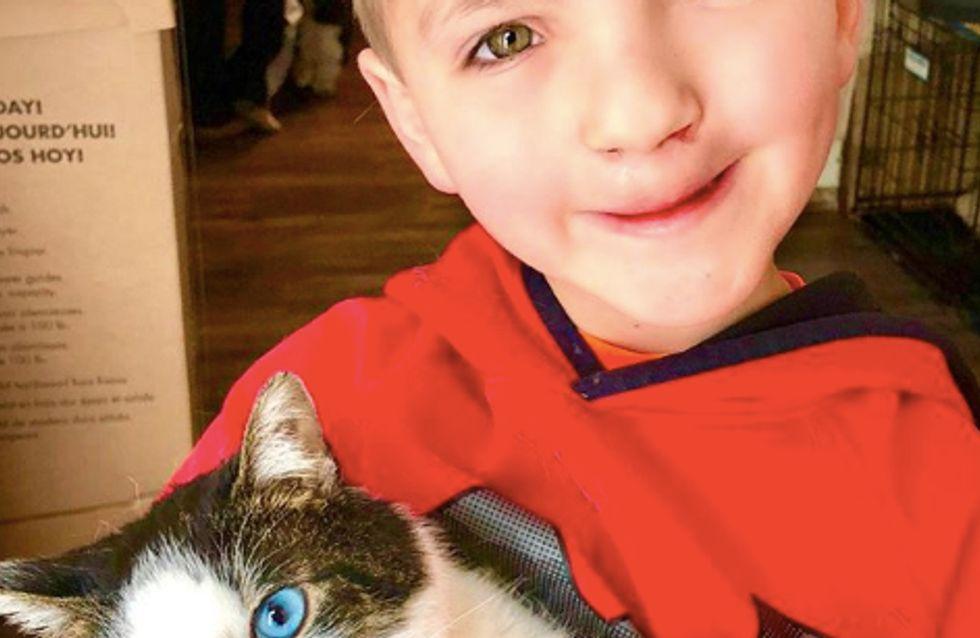 Moqué sur son physique, ce petit garçon adopte un chat qui lui ressemble (Photos)