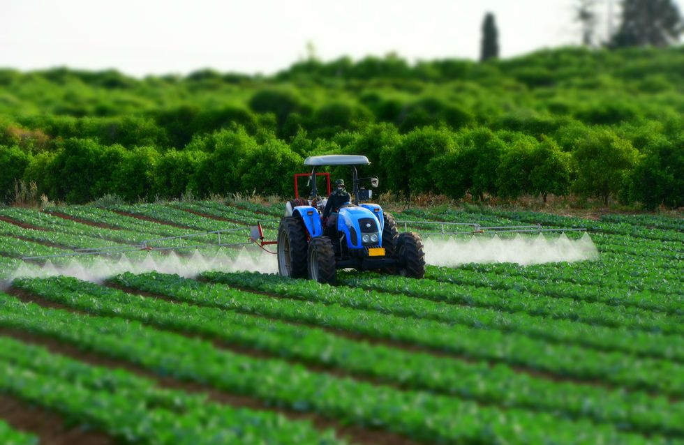 Parkinson, les pesticides menacent agriculteurs et riverains