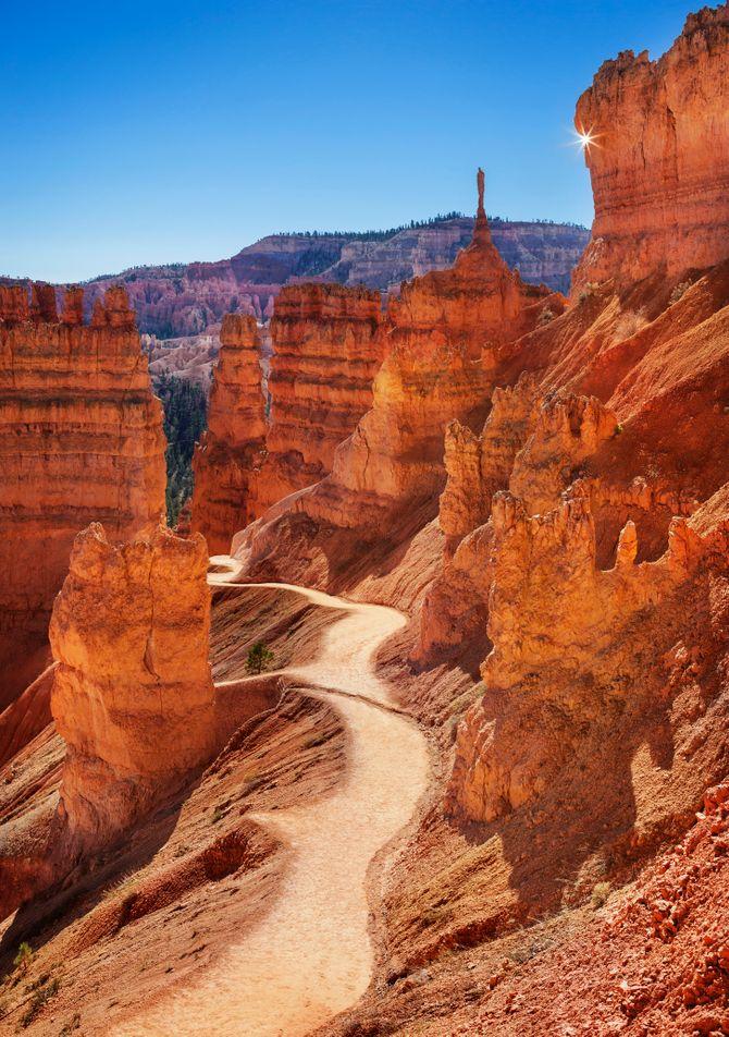 Le désert de Sonora et le plateau du Colorado aux États-Unis