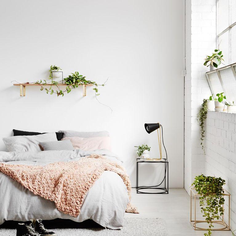 quelle plante avoir dans la chambre. Black Bedroom Furniture Sets. Home Design Ideas