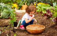 Nos astuces pour initier les enfants au jardinage