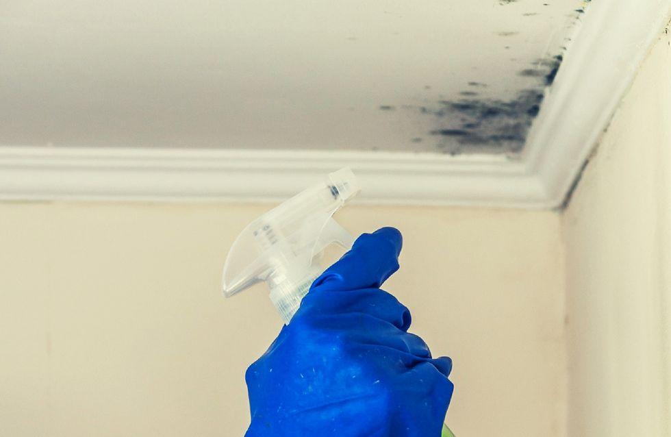 5 trucchi fai-da-te per eliminare la muffa dalle pareti