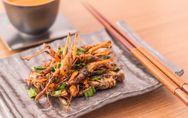 Comer insectos es bueno para la salud
