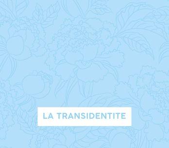 La transidentité (Podcast)