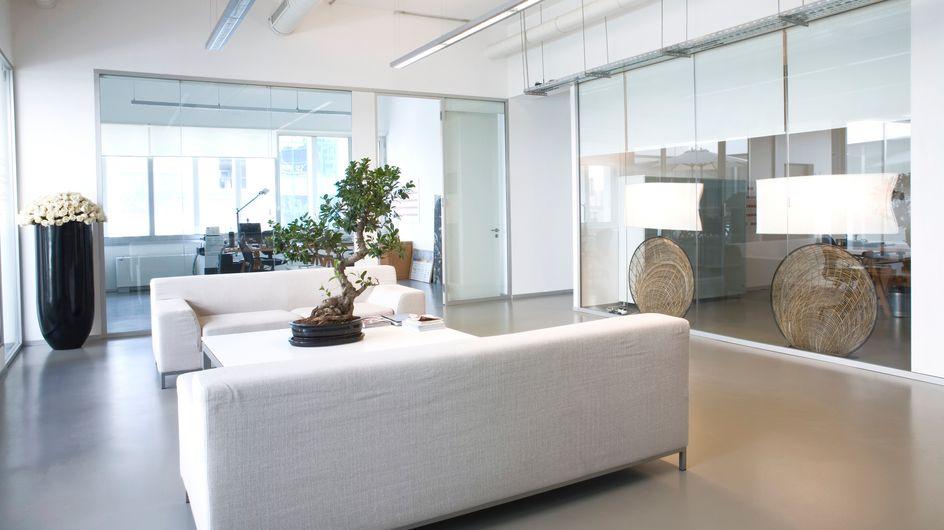 ¿Cómo debería ser la decoración de tu oficina?