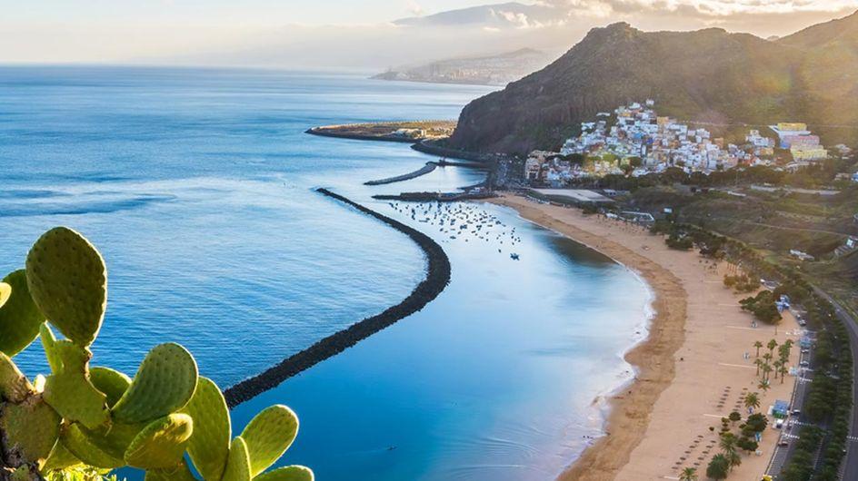Von Aloe Vera bis zum Vulkan: Die 3 besten Ausflugsziele auf Teneriffa!