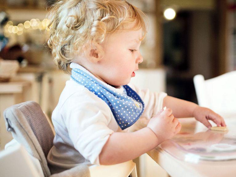Hochstühle Für Babys Und Kleinkinder ~ Babyhochstuhl finden die besten babyhochstühle im Überblick