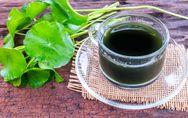 Centella asiatica: i benefici contro cellulite e gonfiore!