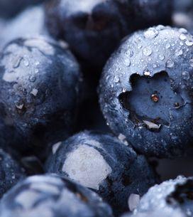 Mirtillo nero: ecco i 10 benefici a cui non avresti mai pensato!