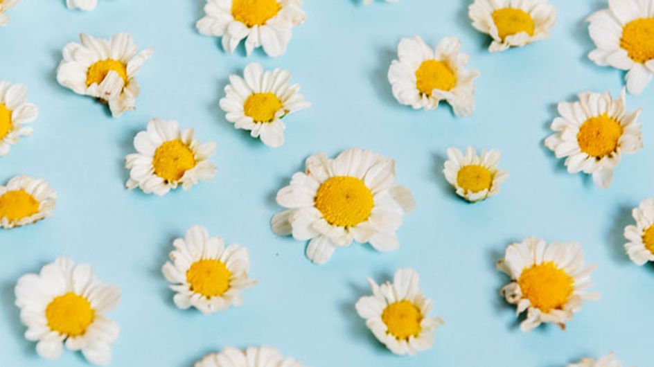 5 Hausmittel gegen Halsschmerzen: Die helfen wirklich!