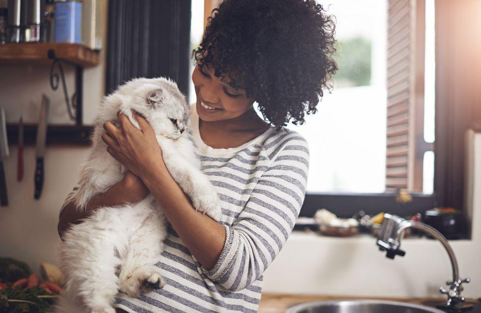 """Cette entreprise instaure un congé """"maternité"""" aux salariés qui adoptent un animal"""