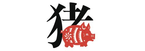 Chinese zodiac sign: the pig