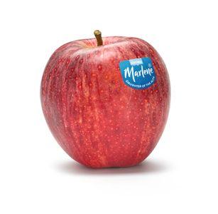 Le mele Gala