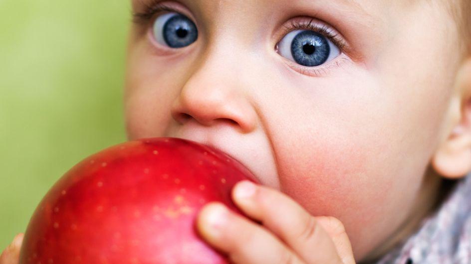 Mela e svezzamento: perché sceglierla e come proporla ai più piccoli!