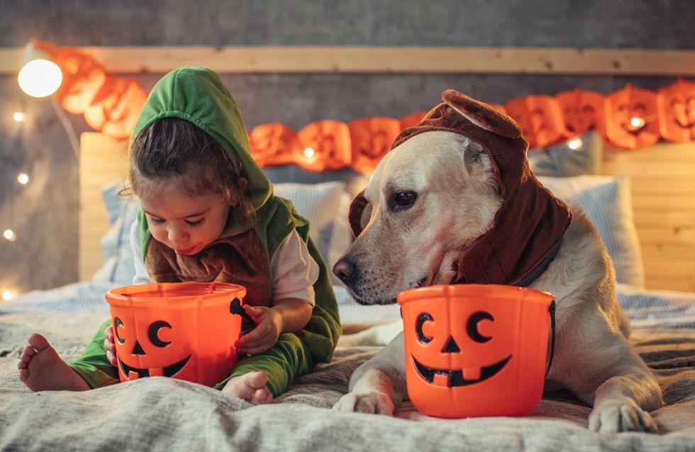 Los mejores disfraces de Halloween para los más peques ¡cómpralos aquí!