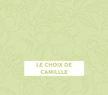 Le choix de Camille (Podcast)