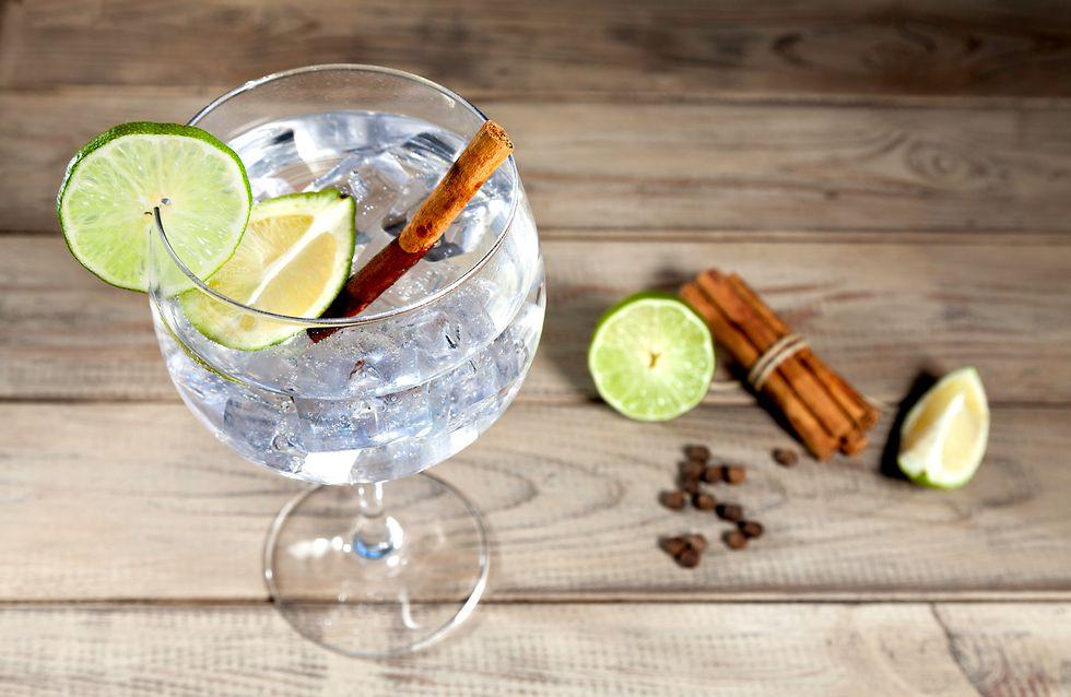 Las ginebras más top para gin-tonics de 10