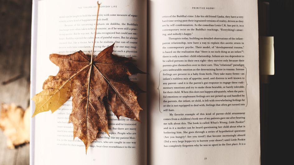 Découvrez nos derniers romans coups de coeur