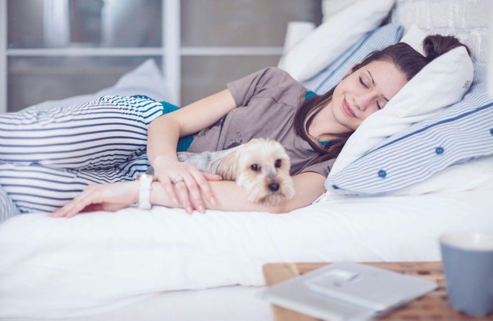 C'est prouvé, les femmes préfèrent dormir avec un chien qu'avec un homme !