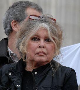 Brigitte Bardot : ses déclarations ahurissantes sur le harcèlement de rue ?
