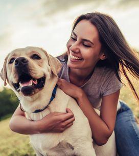 Los mejores regalos para los dueños de mascotas