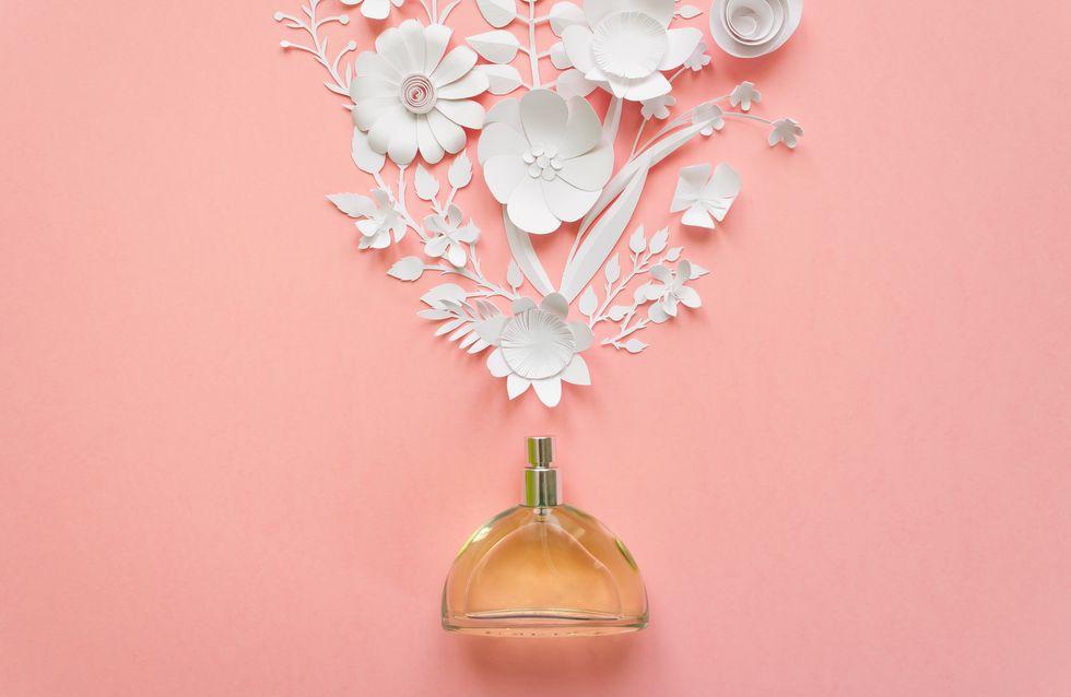 Los mejores perfumes low-cost de las marcas más prestigiosas