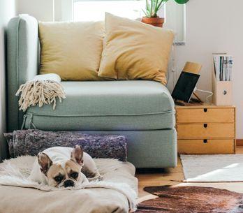 5 Dinge, mit denen dein Zuhause immer aufgeräumt wirkt