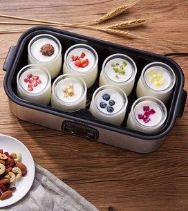 Les yaourts maison