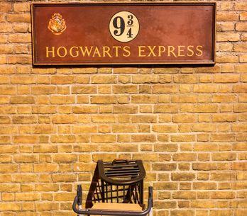 Hogwarts a casa tua: tutti i gadget per ricreare il magico mondo di Harry Potter