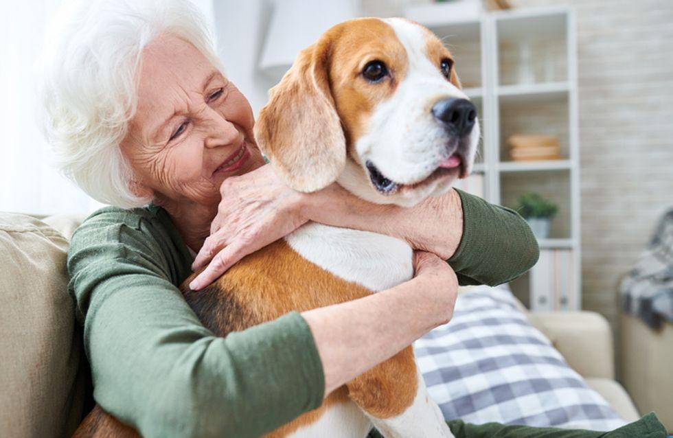 Ce projet vise à ne plus séparer les animaux de leur maître en maison de retraite et on adore !