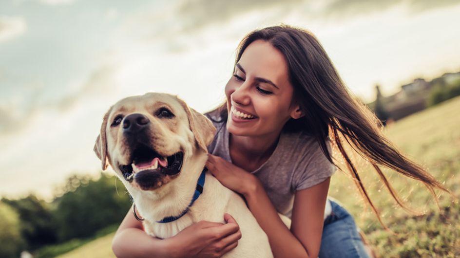 Pour vivre plus longtemps, adopter un chien serait une très bonne idée !
