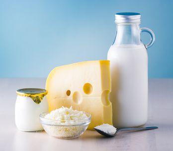 Le classement des aliments les plus riches en calcium