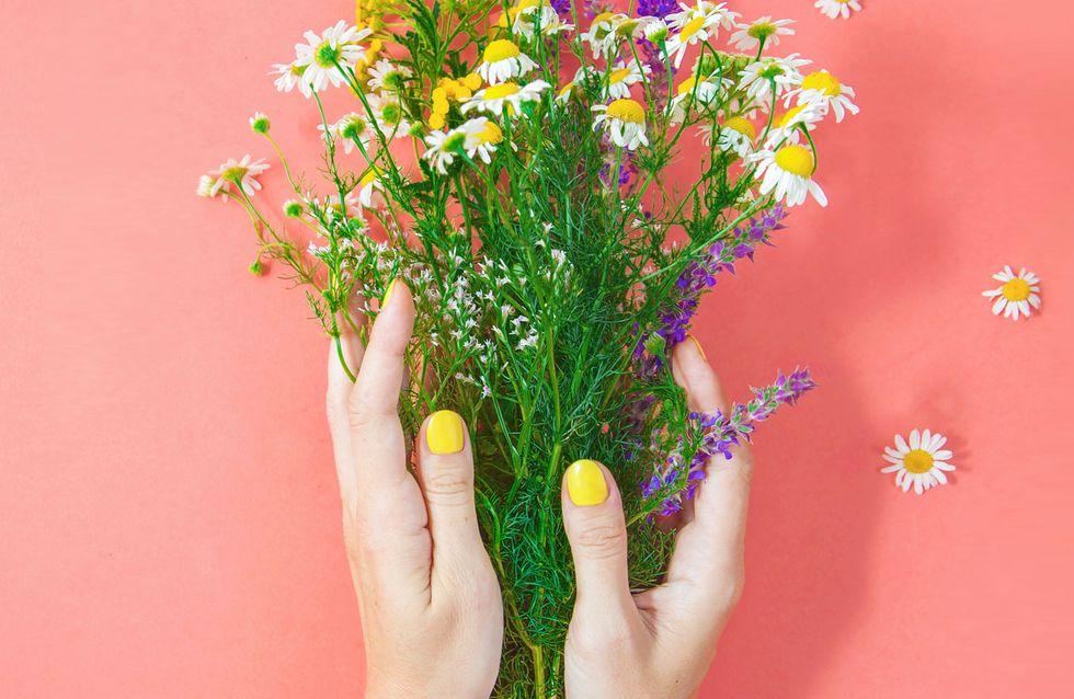 Samenbomben DIY: Hol dir den 'Guerilla Gardening'-Trend nach Hause