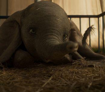 La nouvelle bande-annonce de Dumbo nous met du baume au coeur (vidéo)