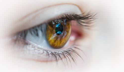 Augen bedeutung grüne Grüne Augen