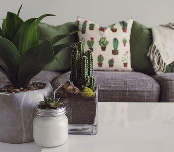 Ideas fáciles de decoración desde la habitación hasta el salón