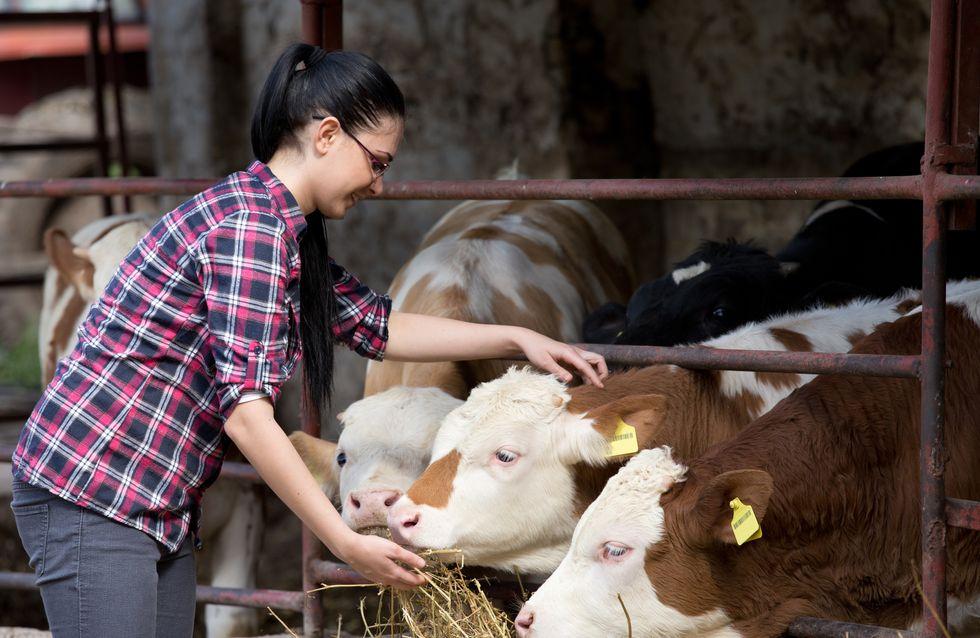 À 15 ans, elle crée une cagnotte pour sauver la ferme de ses parents
