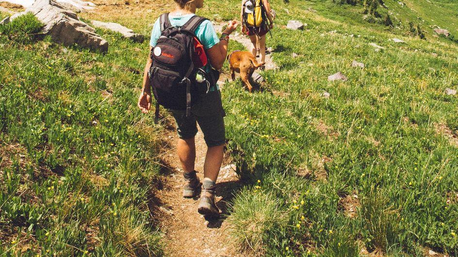 Les équipements incontournables de la randonnée