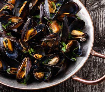 Tout savoir sur les fruits de mer