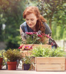 C'est prouvé ! Jardiner serait aussi bon pour la santé que de faire du sport