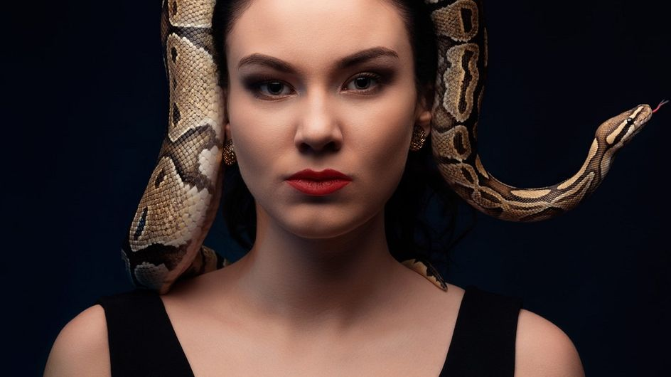 Sognare serpenti: qual è il significato psicologico?
