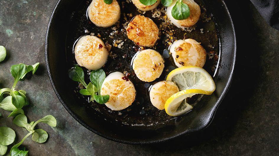 Toutes nos recettes pour cuisiner la Saint-Jacques