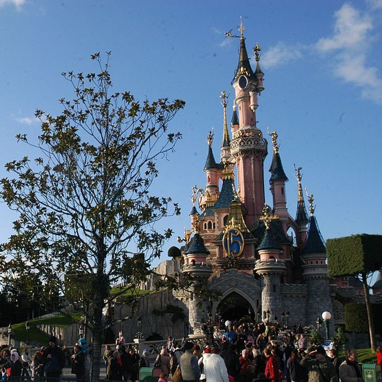 Un jeune trisomique recalé d'une attraction à Disneyland Paris
