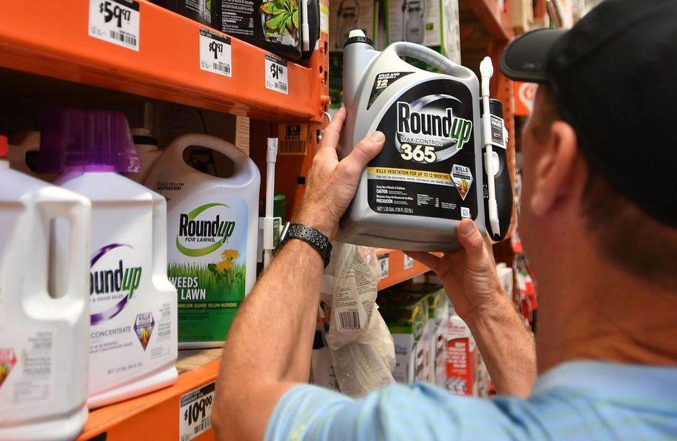 Monsanto condamné à verser deux milliards de dollars à un couple atteint d'un cancer