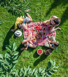 ¿Qué llevar a un picnic? Ideas para un día en el campo