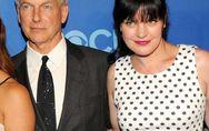 NCIS-Star Pauley Perrette: Hat Marc Harmon sie angegriffen?